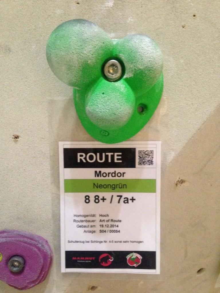 Klettergriff in grün mit Routenbezeichnung.