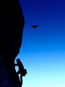 Krähe fliegt im Hintergrund von einem Kletterer...